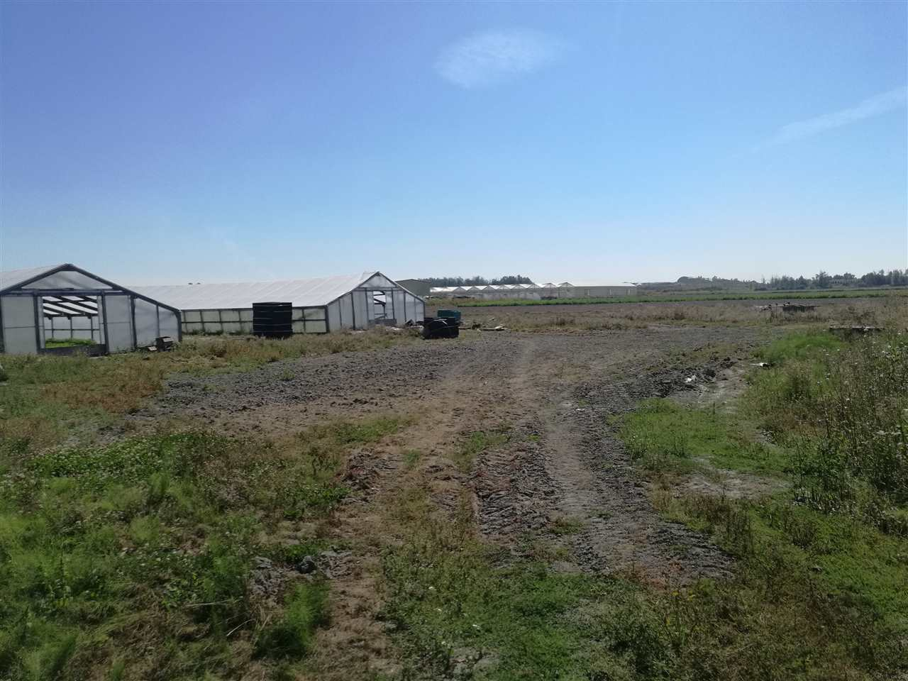 Very rare 51.65 acres farmland in Richmond, next to industry, golf course, highway. Mainly land value. House is still liveable though. Good potential for future development. 49.3 acres land & house next door at 14540 Westminster listed for sale as well, to add up to 100 acres total. Both age and measurements are approximate. Need to be verified by Buyer and Buyer?s agent if deemed important. The property is rented to a farm and at least 48 hours notice for all showings. Absolutely not walk on the property without presence of listing agent.