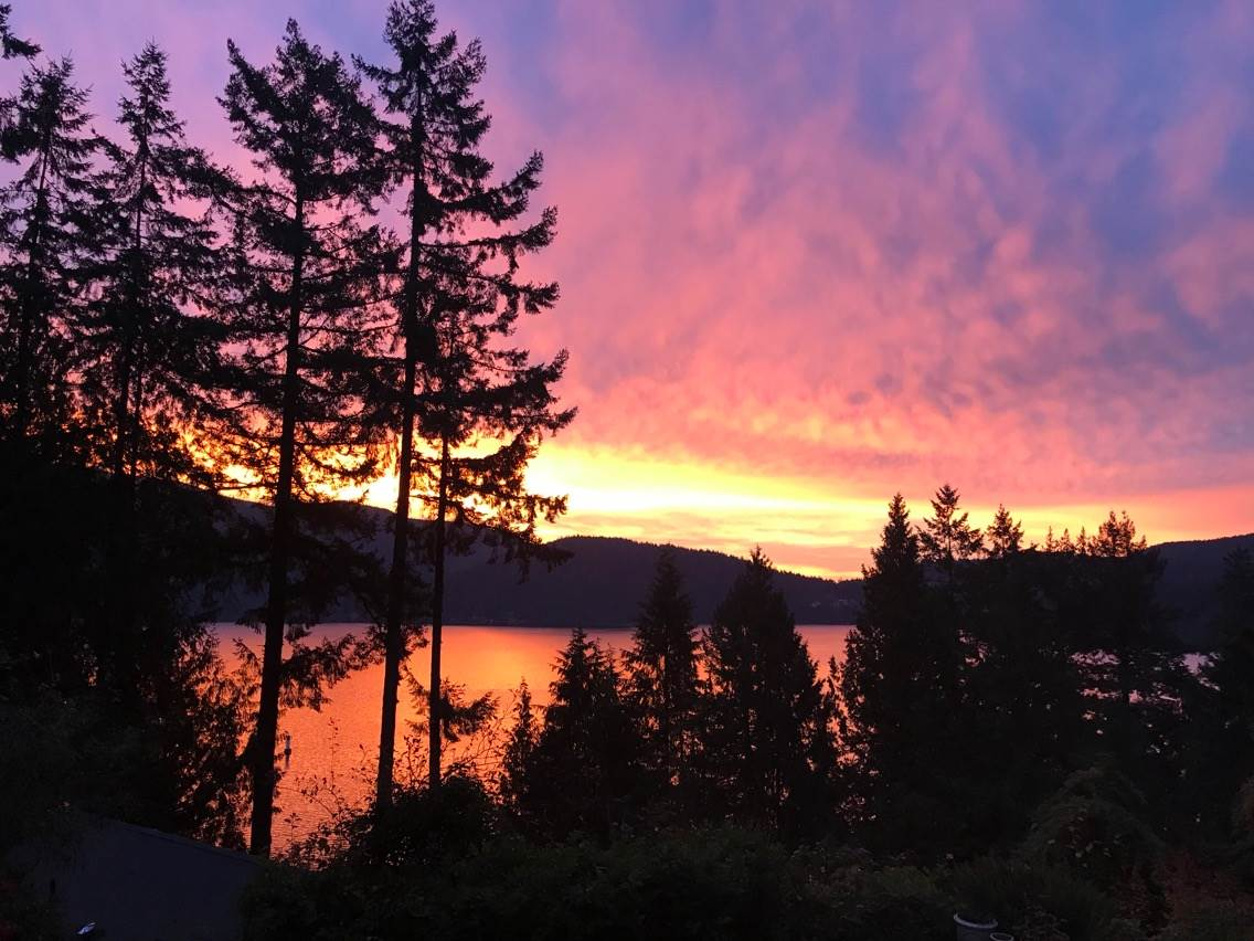 Incredibly rare opportunity to build your dream home in a magical location near the water with beautiful views of the Indian Arm. Water line already connected but will need to add other services to this amazing lot. Beautifully wooded area with many lovely homes and an amazing lifestyle. World class recreation at your doorstep includes boating, paddle-boarding, skiing, golfing and hiking the scenic trails all around you. Just 10 mins to Parkgate and 30 mins to downtown Vancouver! House currently straddling two lots is not included in the sale of Lot 12 and seller will have it torn down so they can build a new home for themselves on Lot 13. Call for more details!