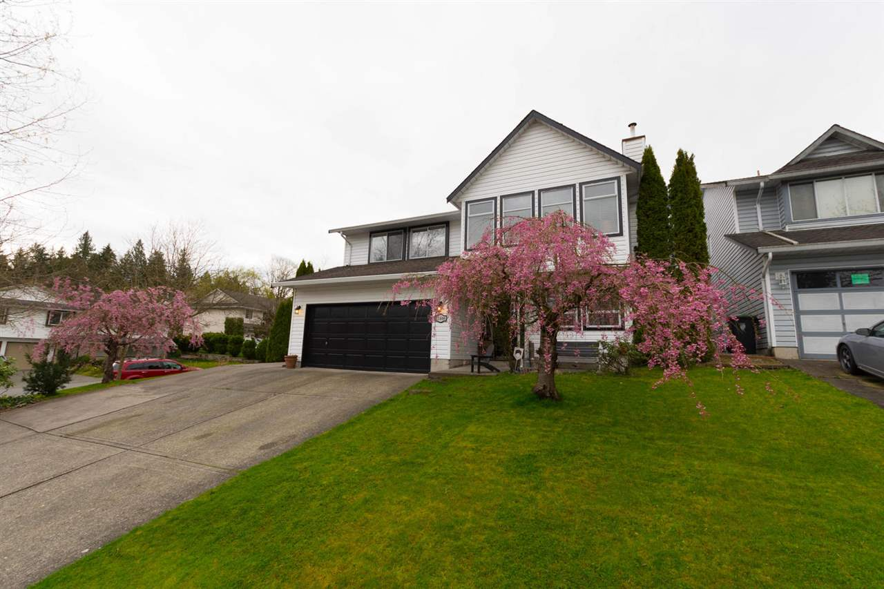 Located in quiet area of Langley's desirable Walnut Grove this spacious bsmt style family home w/many updates incl vinyl plank flooring & much more absolutely must be seen to appreciate. Enter this fine home into very spacious foyer/flex rm w/gas f/p. 1465 sf upper level is designed for family & entertaining w/spacious din rm & liv rm w/cozy gas f/p, attractive vinyl plank flring & crown moldings, very spacious kitchen w/scads of cabinets, huge island w/breakfast bar, spacious E/A & dr to covered deck overlooking attractive rear yd, 3 bdrm & 2 baths w/very spacious mbdrm w/3 pce ensuite & w/i closet. Lower flr w/rec rm, bar area 4 pce bath & very spacious bdrm. Dble garage & RV parking. Enjoy the covered deck, patio & gazebo.