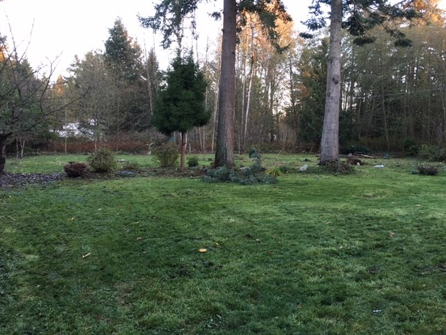 1.08 Acres rectangular lot located on the most sought after Elgin Chantrell area. This is the very flat lot with 164 feet wide and over 286 feet deep. Sunny east facing back yard. Basement is possible to build upon city approval. Build your luxury dream mansion on the most desirable location. or hold for future development. Potentially sub-dividable. Minutes walk to Chantrell Creek elementary and Elgin Park Secondary.