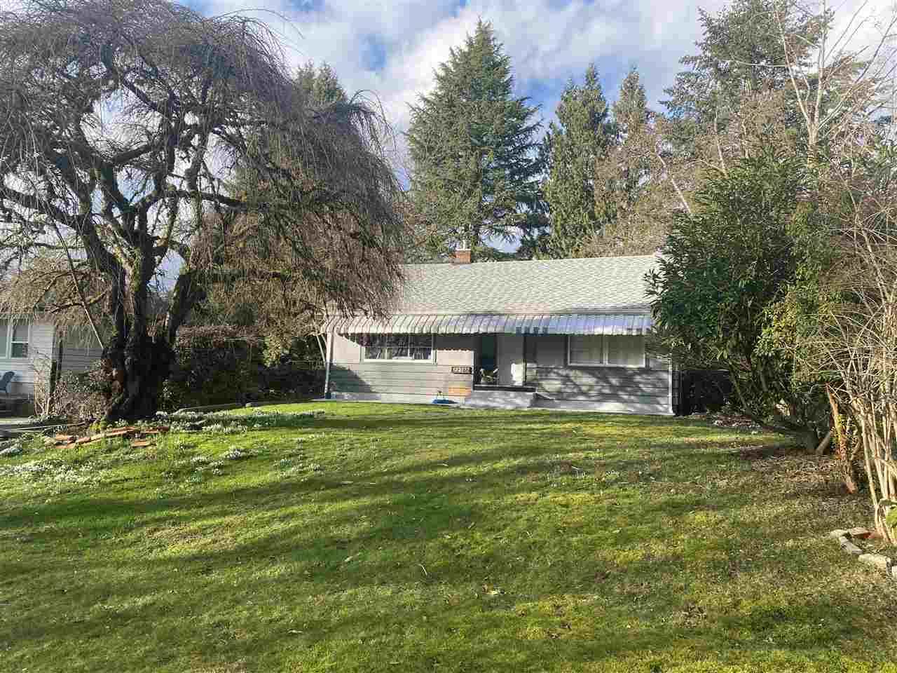 Attention Investors! Amazing first time investment property or add to you portfolio. Currently tenanted. Huge lot, lots of opportunity here. 1936 sq ft rancher with basement, centrally located. Underground garage.