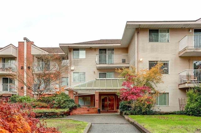 Central Coquitlam's most sought after building has a rare garden level 2 bedroom unit available. Pine Court is located only 5 mins walking distance from the new Evergreen Skytrain station, Lafarge Lake recreation area, Douglas College and Coquitlam Centre. The unit features an open floor plan with updated laminate floor, a feature gas fireplace, insuite laundry, and a large patio with plenty of private garden space. PETS AND RENTALS ALLOWED!!! First viewing at Open House Sat Nov 4 from 2-4pm & Sun Nov 5 from 2-4pm