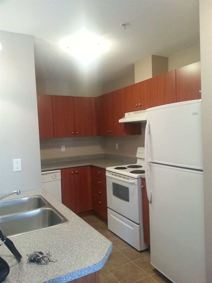 The Waddington -Very nice apartment in the central Clearbrook area. This is big One BDRM Spacious Living area, Open Kitchen nice cabinets , Counter tops & Tile flooring Tenant paying $840.