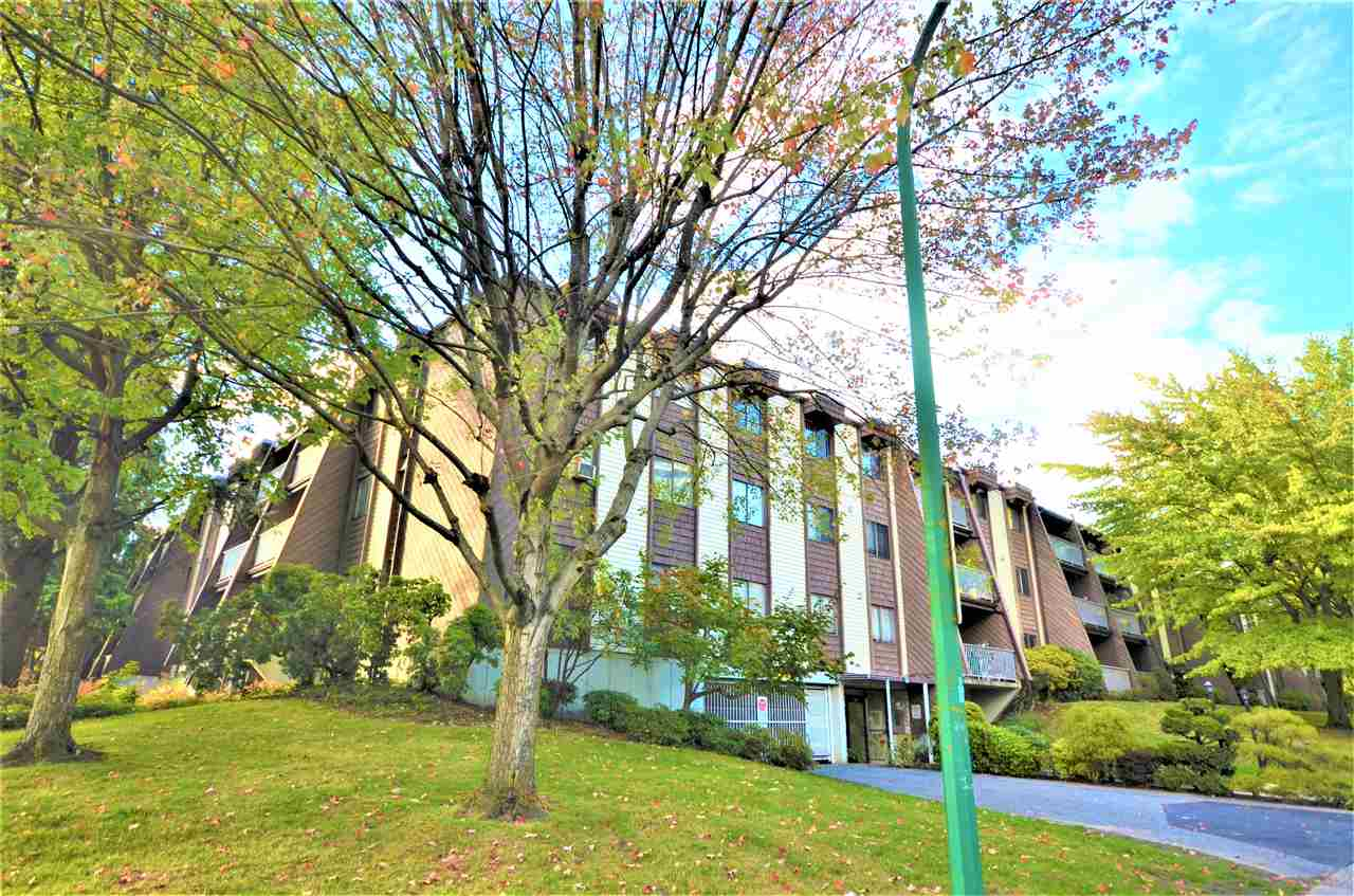 Very nice, clean, 2 bdrm top floor with vaulted ceilings in Living room & overlooking quiet courtyard. Laminate floor in Living room & hall, floor tile in kitchen & bathroom & ceramic top stove, in Suite Laundry. Just a short walk to skytrain & Lougheed Mall. The entire complex was re-plumbed a couple of years ago and a new torch-on roof is being installed 2007, new elevator 2017. The complex has an indoor pool in recreation centre and lots of visitor parking. The maintenance fee of $336.96 includes heat & hot water. Pet allowed. One medium dog (20-50 lbs) or two small dogs (less than 20 lbs) or two cats or one small dog and one cat. No Rentals.  The offer will be presented by listing agent on Tuesday, Dec 12th after 6PM.