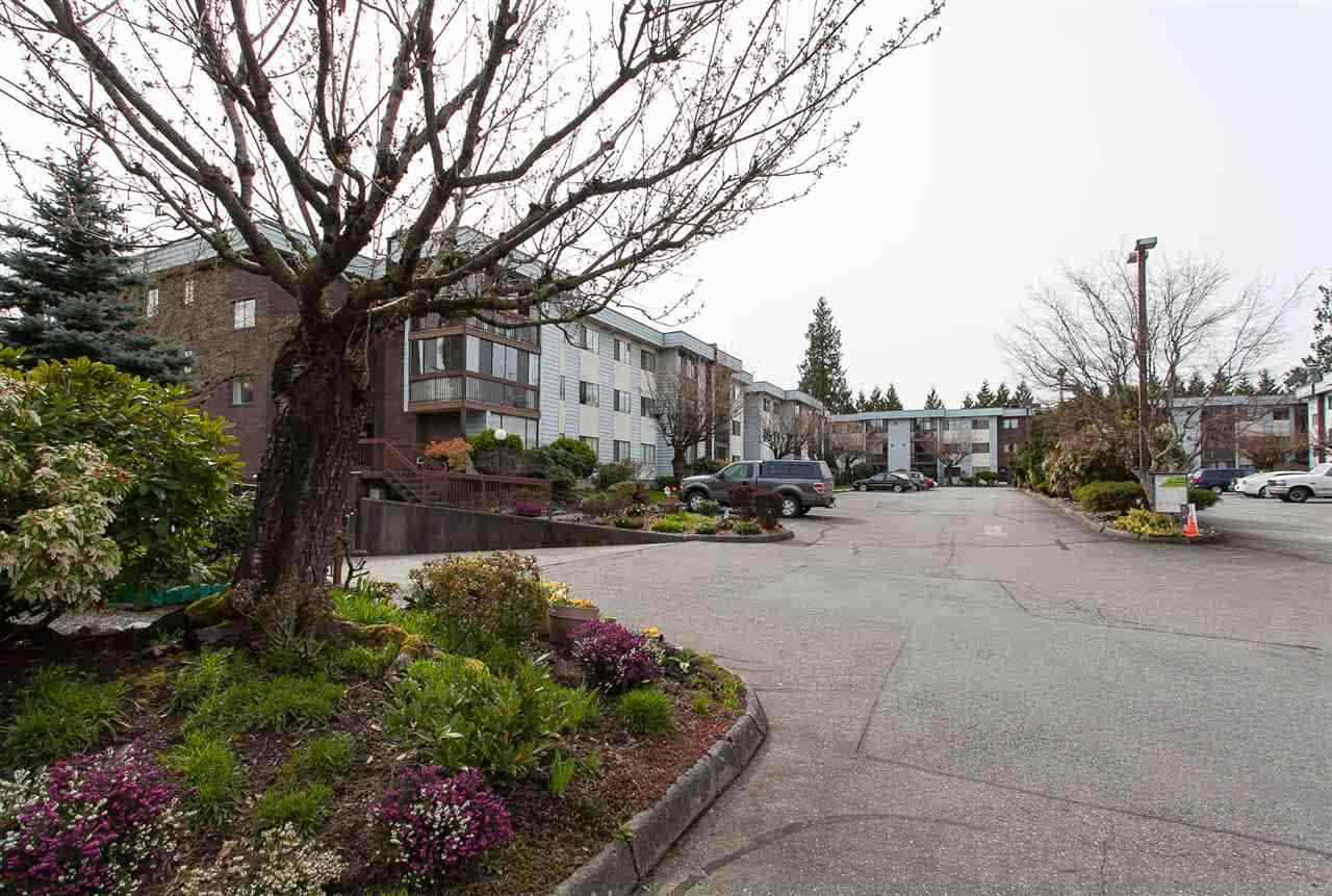 Corner unit on ground floor in popular Alameda Court! Bright corner unit lots of natural light, south/east totally private & quiet. Hardwood flooring thru hallway and bedrooms , carpets in LR & DR Open plan kitchen with newer appliances and Island for extra counter space and cabinet drawers. Fully Updated bath - with jetted tub, counter & sink. Full size Washer/Dryer with shelving. Enclosed Large deck with sliding windows, and storage room off deck plus separate storage room on same floor. Updated Electric Fireplace. Affordable strata fee includes heat & hot water. Very friendly complex. Easy access to freeway, hospital & shopping. RV parking. 55+, no pets, no rentals. Open House Sunday 22, 1-3.