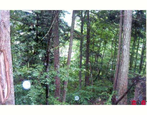 Nearly 2/3 acre parcel overlooking Fraser River in Yale. Treed and sloped proper ty may require Geo Tech for building approval only 15 minutes to Hope Yale water system available.