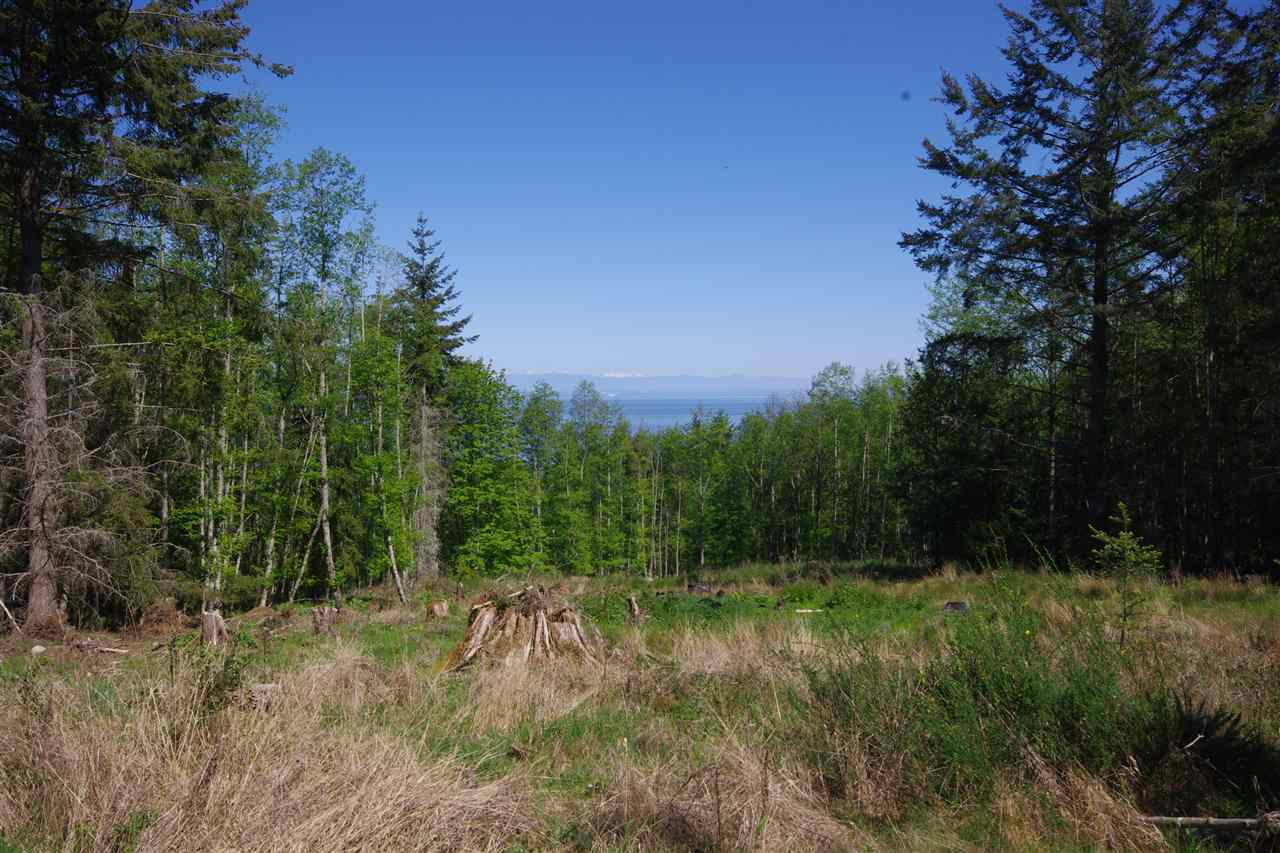 4.95 acres backing on to Bodega Ridge Park. Potential home site is cleared. Priced below the assessed value.