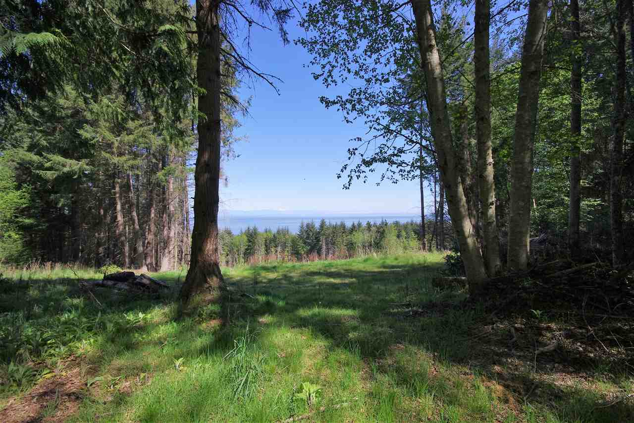 Ocean Views of Georgia Strait from this 5.15 acres of forest backing onto Bodega Ridge Park. Driveway roughed in to view and potential home site. Priced below the assessed value.