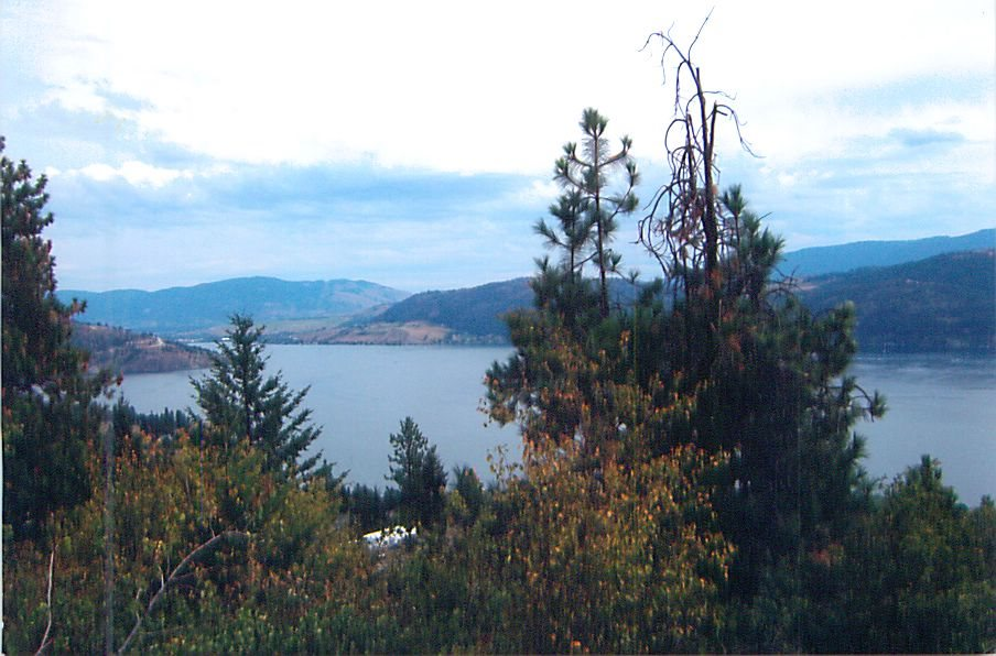 Great holding lot close to Kelowna's fabulous view quiet and serene upcoming subdivision with paved roads, water, cable, phone & hydro. Some who want to get away from it all, this might just be the place for a cottage or a weekend retreat, or a nice family home.