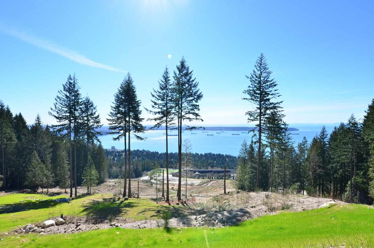 Rogers Creek Primary Location. Subdividable Single Family Building Lot. Community future development including world class ski resort and a shopping village. Build your family estate mansion, this is one of your last options in West Vancouver. Information package available upon request.