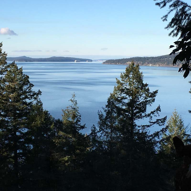Desirable oceanfront 4+ acres in wonderful Narrows West! Pretty sea views. Bring your architect and build your dream here. Enjoy the peaceful island lifestyle on this sunny property.