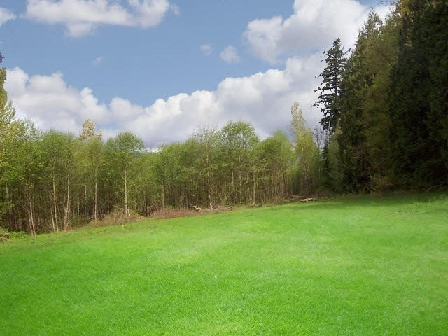 Prime 9.6 acres!!! Build your dream home here!! Beautiful piece of property with a gentle slope. Great land to plant blueberries, organic farm or bring the horses (good horse property!!!) This is a rare property in West Mission. Also known as Sunny Silverhill!!