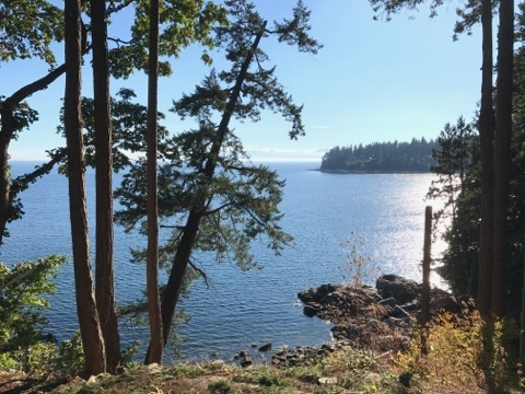 1.58 acre waterfront property with a lovely beach & beach cove that enjoys fabulous views of the Georgia Strait.  This newly subdivided south facing waterfront parcel has excellent road access with services in place including hydro & natural gas.  Large mature cedar trees allow for total privacy on all sides with lovely arbutus surrounding the natural outcropping rock bench that leads down to the water.  Wonderful solid granite building site ready for your dream home with plenty of room for a cottage or second dwelling.  Located 5 minutes from Sechelt in popular Halfmoon Bay.  A rare offering.