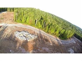 Mcfadden Creek Estates! One of the only available 1.6 acre estate lots  - Bordered by nature with controlled building scheme! Area of new luxury homes featuring parklike setting in an Urban neighborhood. Fully serviced lot with underground wiring, curbs and landscaped blvds. Southern exposure for maximum light. Survey and Building plans for 5,200 sf home are included or commission your own. No Builder attached to this sale, pick your own!! Just minutes to Meadowridge Private school. GST has been paid. Call L.S for details and package!