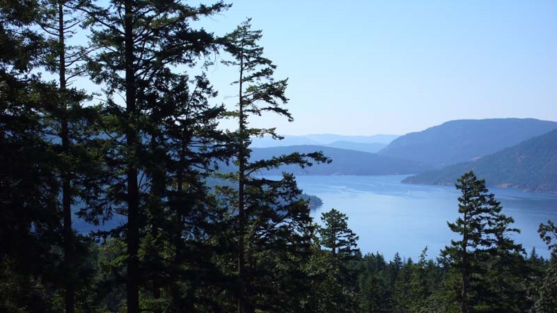 Considered the very best panorama view building lot in phase 6 at Channel Ridge on special Salt Spring Island. Expansive ocean views, plus islands & mountains background. Sunny 0.504 acre, S/SW exposure, treed, serviced building site and beautiful topographical features. On community water and sewer system. Close to all island amenties! Opportunity to build your welcoming home in prestigious, tranquil area. Location! Value here! Build now or maintain as a property asset.