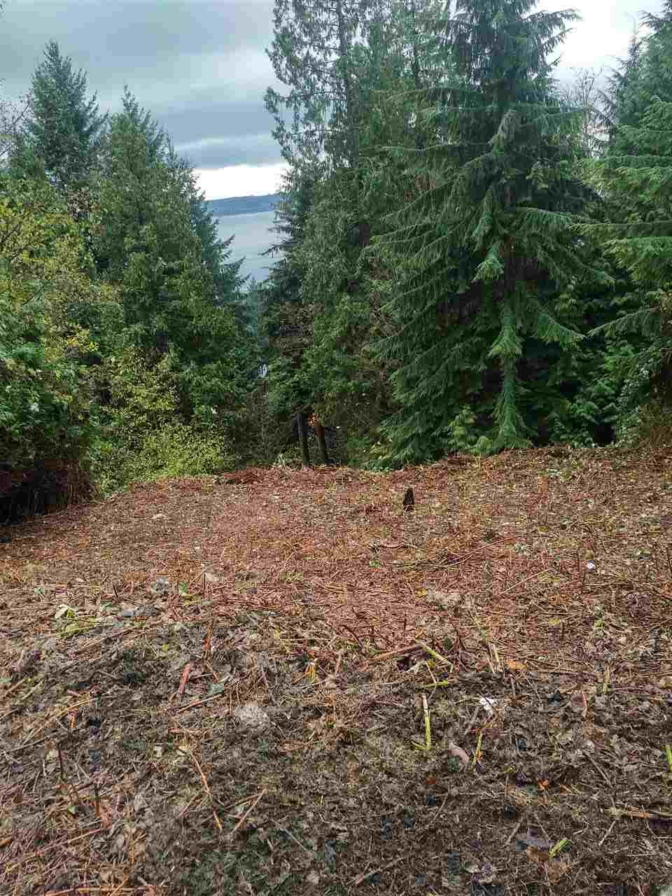 Not often you can buy 19,000 sqft view lot for this price in West Vancouver! Located in the Chelsea development, west of Panorama Village, and in an area of multi-million dollar homes, this lot has a nice view to the South which can be greatly improved with some selected tree removal. The terrain is moderately steep and treed and will require site preparation to establish the best building envelope. Priced to sell and well below assessed value!