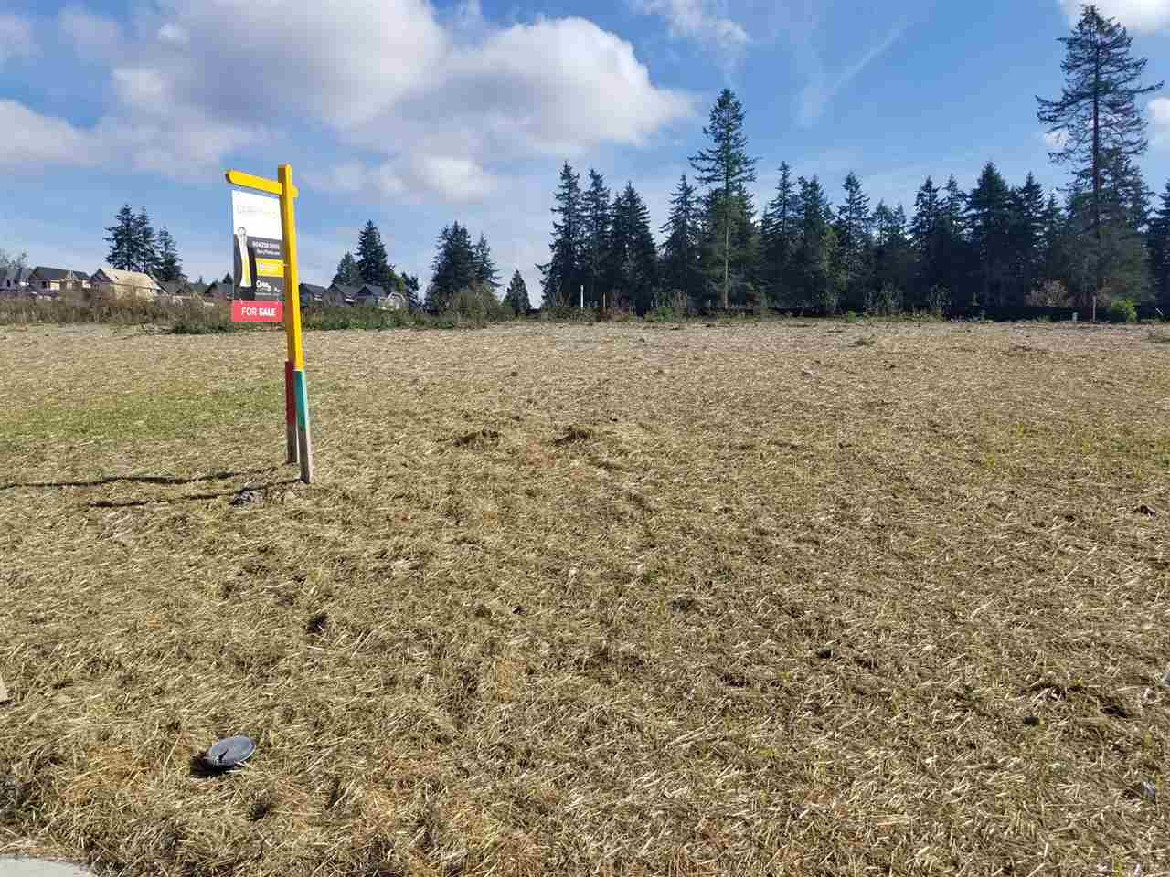 3610 Sqft Lot in the new subdivision, Ready to build. The plans submitted at city hall and can be passed on to the buyers upon request. Adjacent lot 2052 165 ST MLS# R2212478  also available for sale. Hurry before it's gone!!!