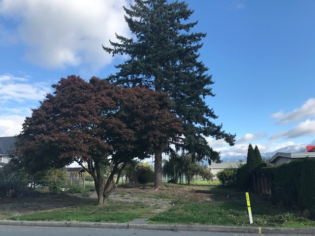 Vacant 63' X 139' building lot in ideal location, backing on school grounds. Only minutes walk to schools, shopping, dining, recreation & more. Explore the potential to build a duplex, or 2 homes with variance. All services at lot line. Opportunity is calling...call for details today.
