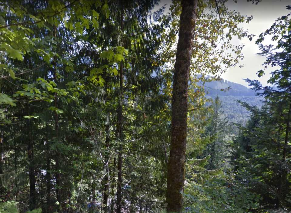 Affordable building lot with a view of the beautiful Slesse Valley.  No water rights currently but can re-apply.  Directions:  from Chilliwack Lake Road to Slesse Road and then off Thor Road which is just past the Canada Post mailboxes.