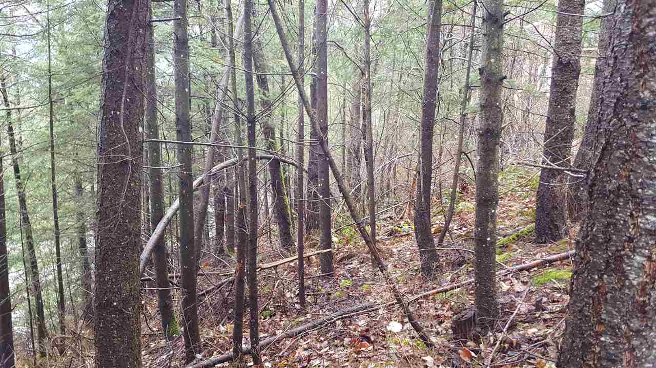 Great building lot located on Thacker Mountain Road.