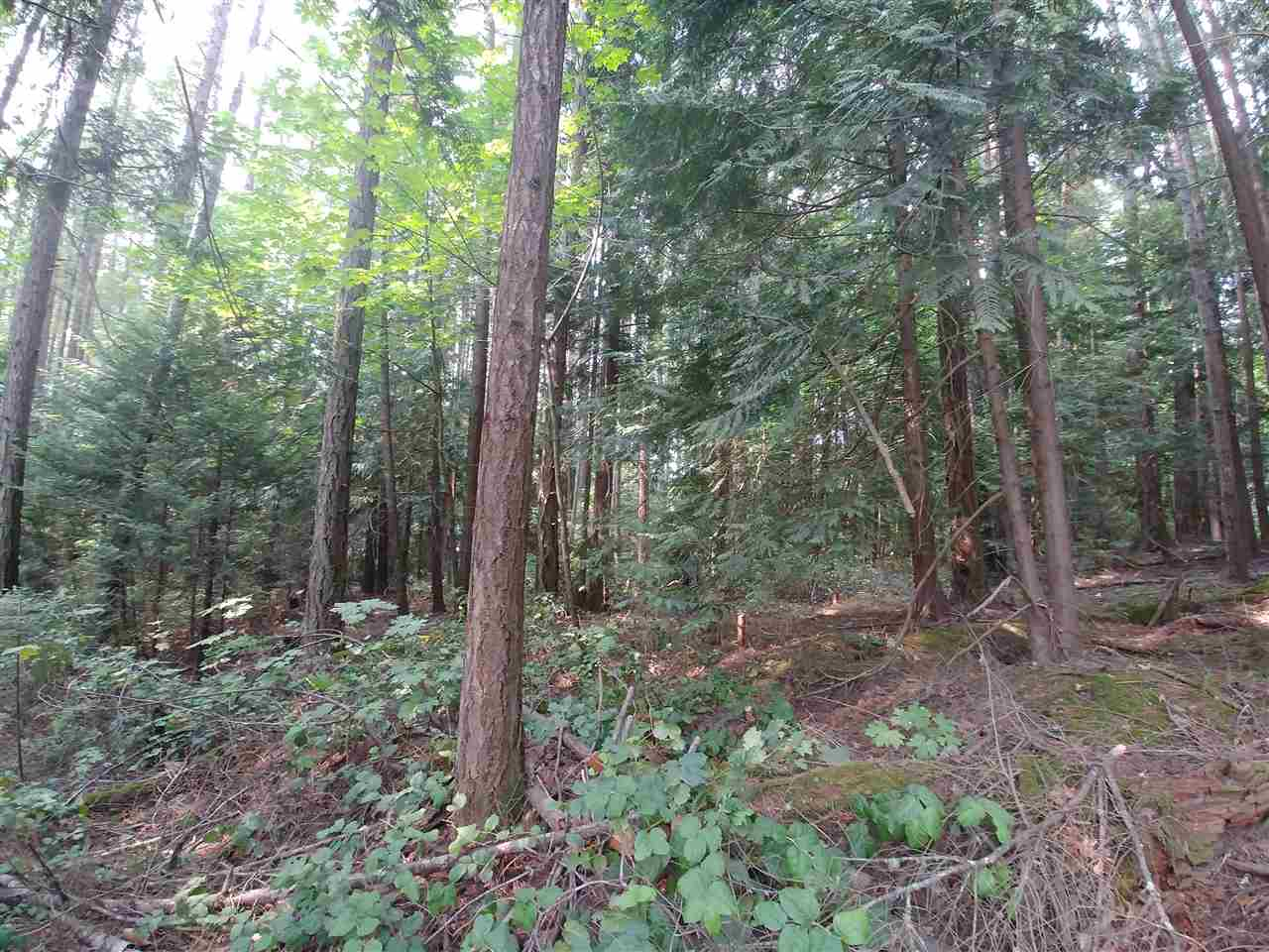 Come live the dream in the beautiful Southern Gulf Islands! Quiet .61 acre treed lot on the corner of Razor Point Rd and Lupin Rd on beautiful Pender Island. Close to the Driftwood Center for island retail and restaurant amenities. Pender Island is one of the few Gulf Islands that has all the services you require on island including medical center, grocery store, retail, library, elementary school, and restaurants. Requires drilled well and septic system.