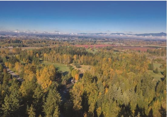 Estate Building lot. 12.5 acres. Private build site which will be amongst one of the newest and best luxury homes. Cross Street 232nd and 58th Ave. Inquire as to what other lots are available. See MLS R2344635. Very Rare Opportunity to build on an already manicured and cleared site.
