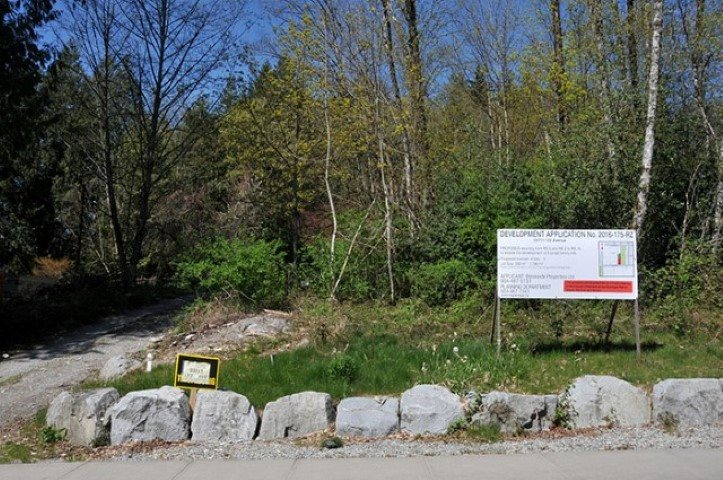 Great building lot in very private location of Silver Valley. 6400sq ft RS -1B. Brentwood System in place. No mandatory building scheme in place. Just Steps from park. Call listing realtor for more information.