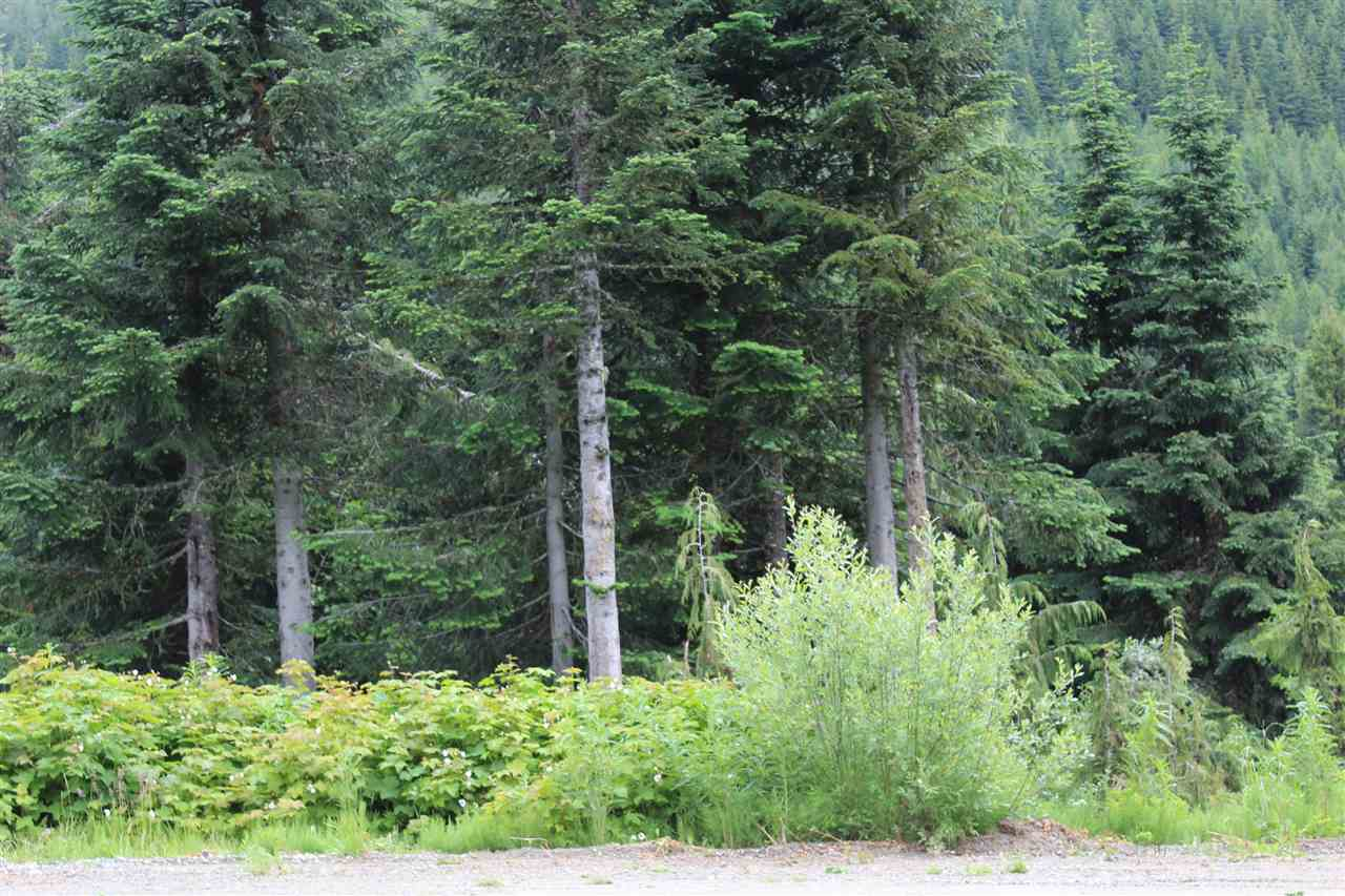 Beautiful 7900 square foot building lot in Sasquatch Mountain Resort formally know as Hemlock Valley in the heart of the Fraser Valley. Zoned RST-3 which allows for a single family residence or a Duplex to be built according to the Fraser Valley Regional District By-Laws. Future development of this lot must be done with a site specific evaluation by an accredited avalanche engineer. Sasquatch Mountain is in the process of a major expansion with a new Red Chair being installed for the 2019/2020 season in accordance with the 40 year Master plan. That will make this community a year round destination yet only an hour drive from most communities in the Fraser Valley. Don't miss this incredible opportunity to get in now.