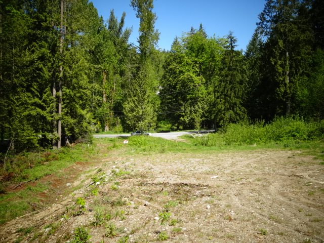 Excellent location for these 5 lots close to Sports Park , Golf course , West of Mission with access from Wren st and Nelson street . 50 mins from Vancouver and other cities via Lougheed Hwy. The area has a rural feel yet even its 5 mins from all amenities . Phenomenal spot to build your dream house. Fully clear and flat lot with plenty of room to build your Shop , Zoning is already in place for a Coach house. Comes with city water and under ground services. Approved area for septic field. Perfect opportunity to choose your neighbor's. Building plans available . More info please call.
