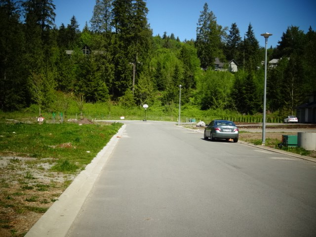 Excellent location for these 5 lots close to Sports Park , Golf course , West of Mission with access from Wren st and Nelson street . 50 mins from Vancouver and other cities via Lougheed Hwy. The area has a rural feel yet even its 5 mins from all amenities . Phenomenal spot to build your dream house. Fully clear and flat lot with plenty of room to build your Shop , Zoning is already in place for a Coach house. Comes with city water and under ground services. Approved area for septic field. Perfect opportunity to choose your neighbor's. Building plans available. More info please call.