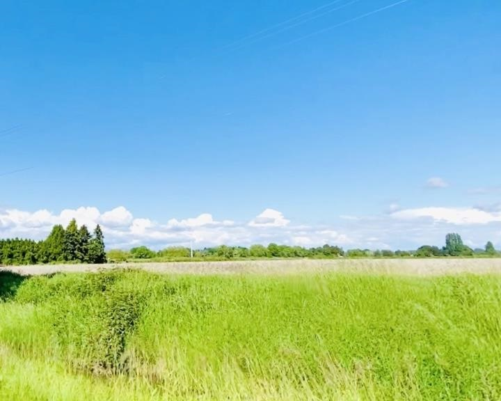 A rare opportunity to own a piece of 34.8 acre farmland on No. 3 Road and all the way to Gilbert Road! Build your dream home with beautiful green space or keep as an investment. A piece of productive farmland nestled between No. 3 Road and Gilbert just south of Steveston Hwy. Please do not disturb tenant. GREAT LOCATION RIGHT ON RICHMOND NO 3 ROAD. Virtual Tour https://youtu.be/9w_kYBKAKwg