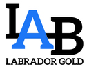 Small logo labrador gold