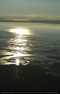 Colville River Delta in the National Petroleum Reserve-Alaska