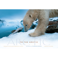 To The Arctic book cover