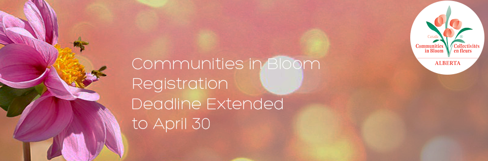 Communities in Bloom 2018 Registration background image