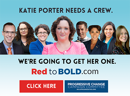 Turn on images to see the Katie Porter and the Red to Bold candidates.