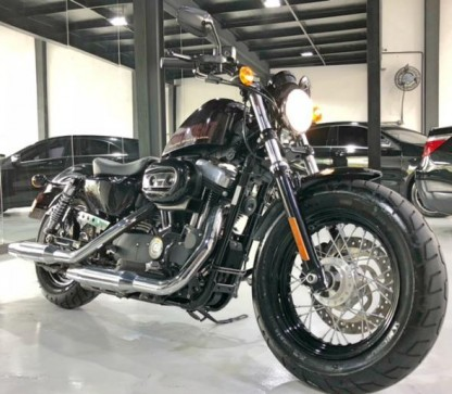 2014 Harley-Davidson Harley Davidson Forty-Eight 2014