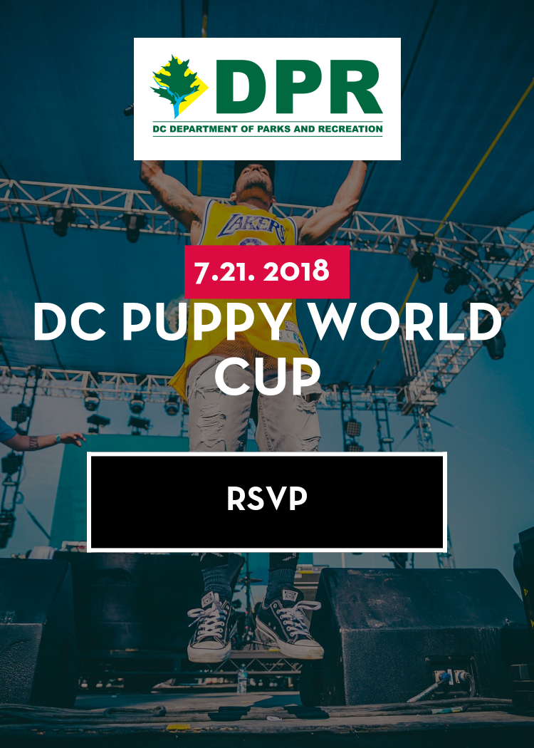 DC Puppy World Cup
