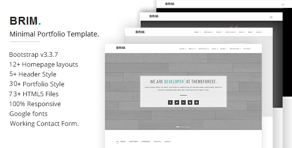 Brim Minimal Portfolio Template | Creative