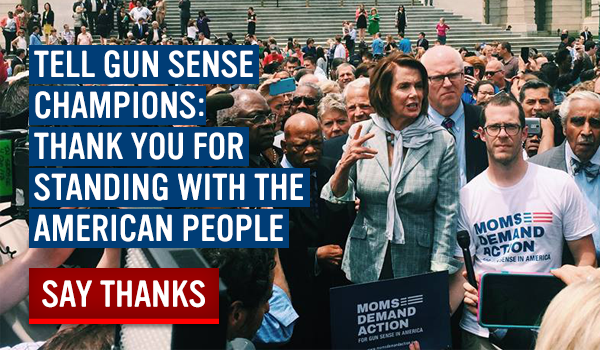 Send your thanks to gun sense champions