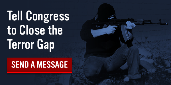Close the Terror Gap