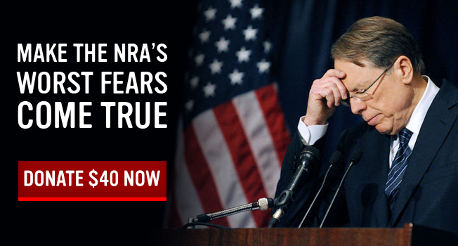 Make the NRA's worst fears come true