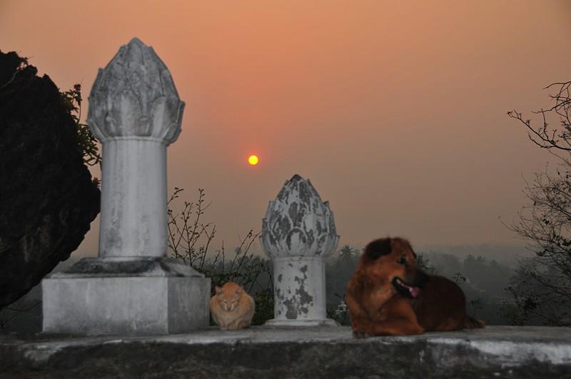 apr 04 4947 temple sunrise