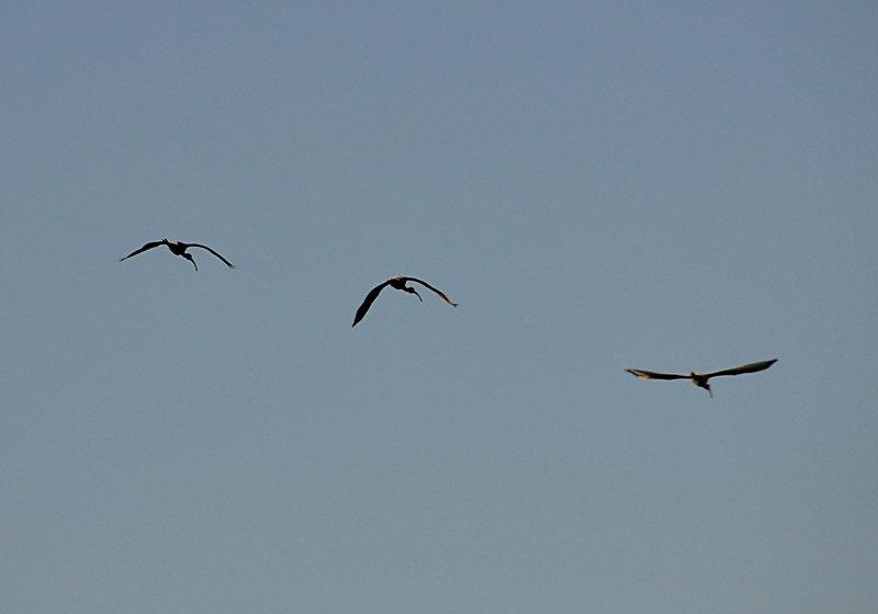 apr 18 0856 quad flight