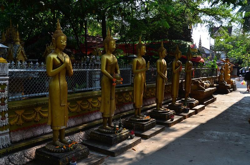 apr 20 0649 standing buddha