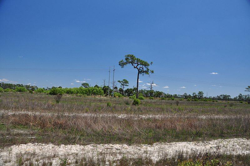 apr 21 1578 lone pine