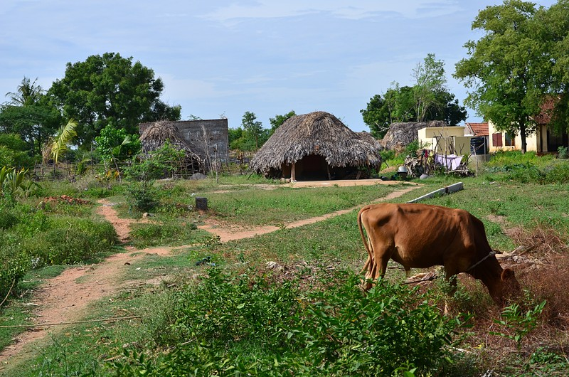 aug 04 3606 village