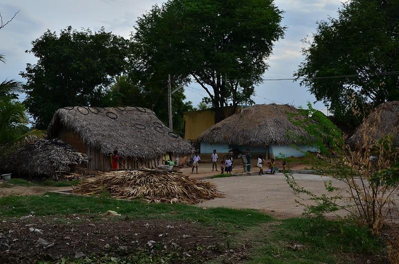 aug 04 4006 pig farmer homes