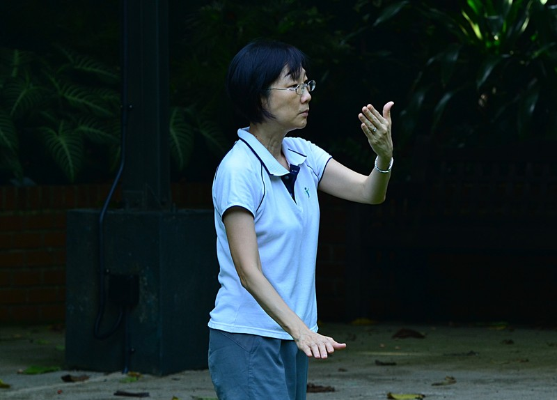 aug 21 6568 tai chi concentration