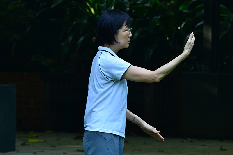 aug 21 6571 tai chi concentration